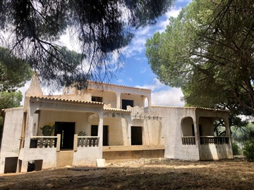 Detached house T4 / Loulé, Figueiral