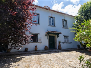 Detached house T7 / Sintra, Sintra