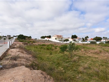 Lote / Torres Vedras, Silveira