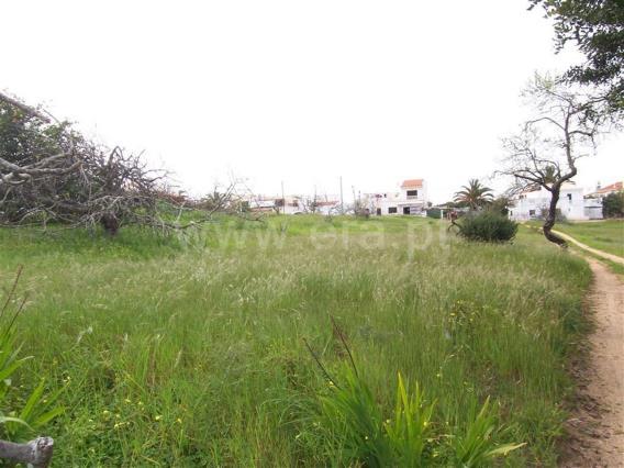 Terreno Rústico / Albufeira, Vale Carro