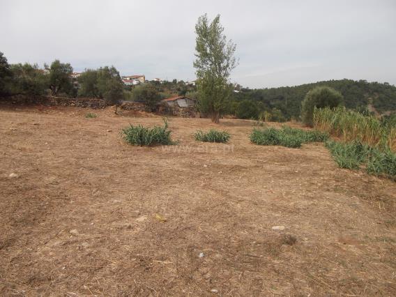 Terreno / Tomar, Além da Ribeira e Pedreira