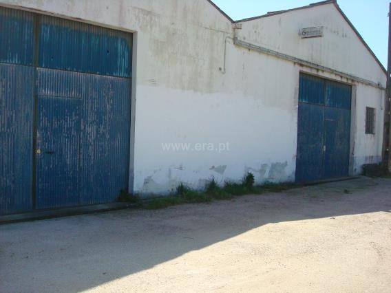 Warehouse / Leiria, Gândara dos Olivais